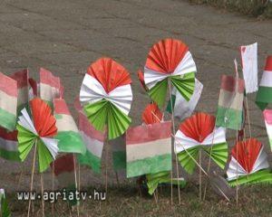 kokárda és zászló